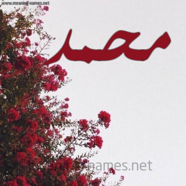 شكل 18 صوره الورد الأحمر للإسم بخط رقعة صورة اسم محمد Mohammed