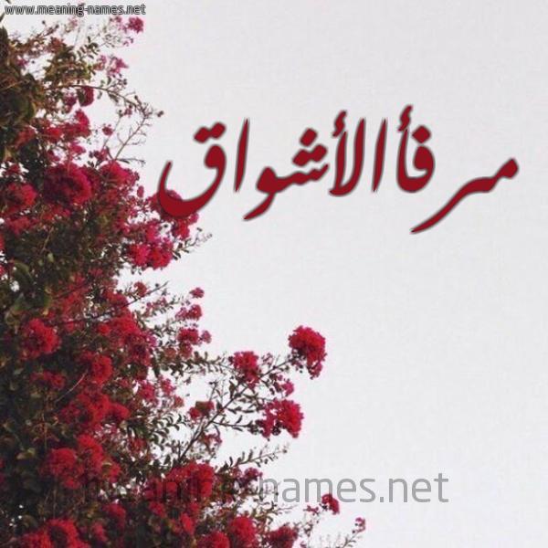 شكل 18 صوره الورد الأحمر للإسم بخط رقعة صورة اسم مرفأالأشواق Mrf'aal'ashwaq
