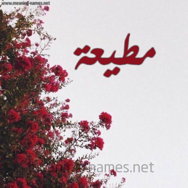 صورة اسم مطيعة Motia شكل 18 صوره الورد الأحمر للإسم بخط رقعة