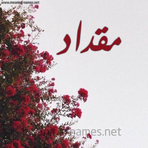 صورة اسم مقداد Mqdad شكل 18 صوره الورد الأحمر للإسم بخط رقعة
