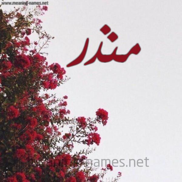 صورة اسم منذر Monzr شكل 18 صوره الورد الأحمر للإسم بخط رقعة