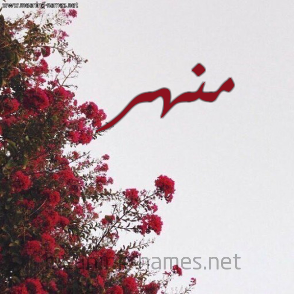 صورة اسم منهر MNHR شكل 18 صوره الورد الأحمر للإسم بخط رقعة