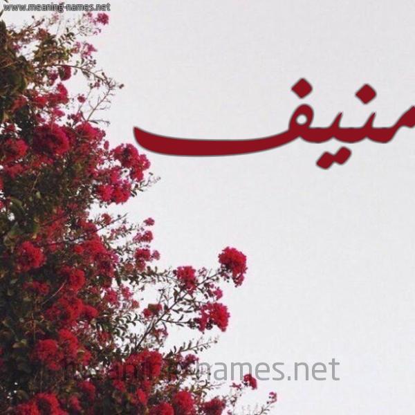 صورة اسم منيف Mnif شكل 18 صوره الورد الأحمر للإسم بخط رقعة