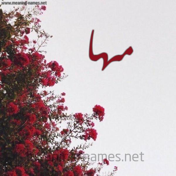 صورة اسم مها Maha شكل 18 صوره الورد الأحمر للإسم بخط رقعة