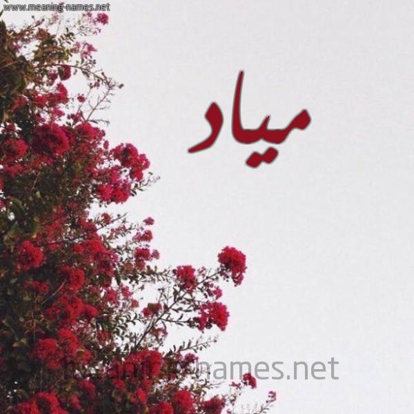 صورة اسم مياد Miad شكل 18 صوره الورد الأحمر للإسم بخط رقعة