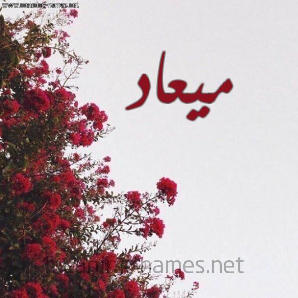 كل زخرفة وحروف ميعاد زخرفة أسماء كول