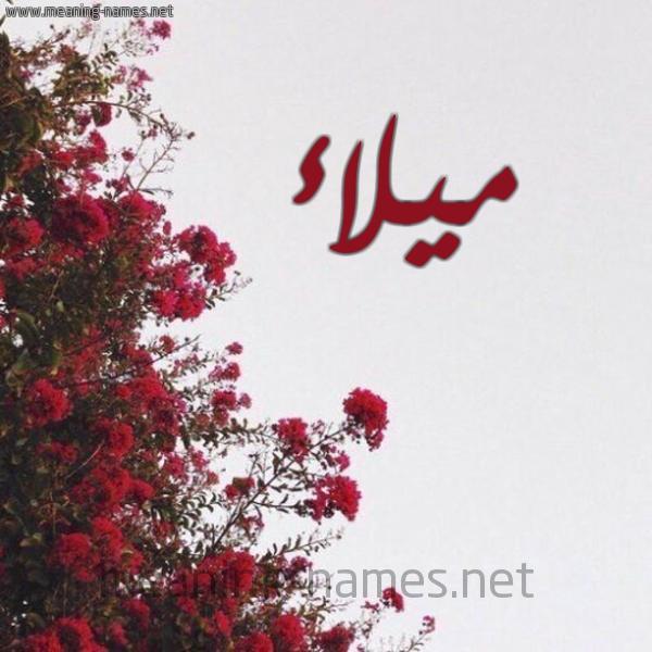 صورة اسم ميلاء Milaa شكل 18 صوره الورد الأحمر للإسم بخط رقعة