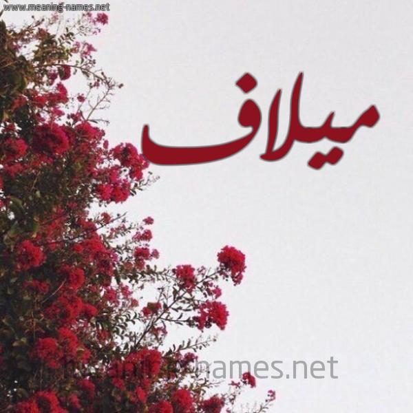 صورة اسم ميلاف Mylaf شكل 18 صوره الورد الأحمر للإسم بخط رقعة