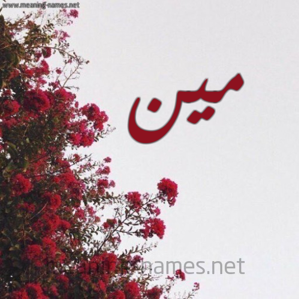 صورة اسم مين MIN شكل 18 صوره الورد الأحمر للإسم بخط رقعة
