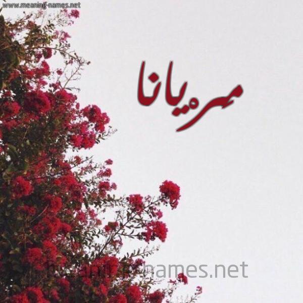صورة اسم مَرْيانا Mariana شكل 18 صوره الورد الأحمر للإسم بخط رقعة