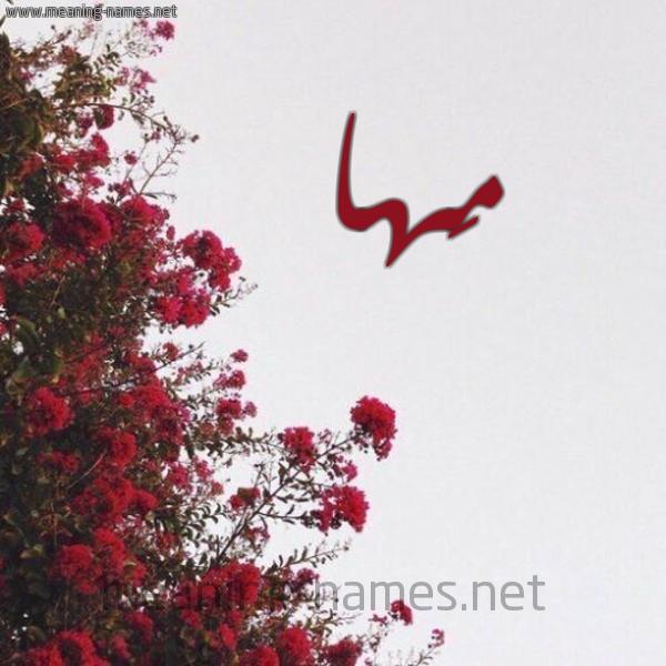 شكل 18 صوره الورد الأحمر للإسم بخط رقعة صورة اسم مَها Maha