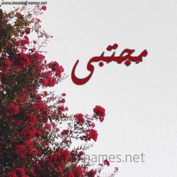 صورة اسم مُجْتَبى MOGTABA شكل 18 صوره الورد الأحمر للإسم بخط رقعة