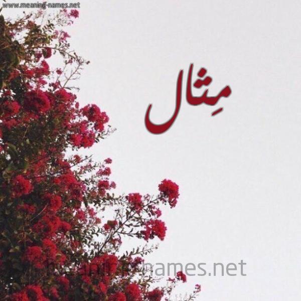 شكل 18 صوره الورد الأحمر للإسم بخط رقعة صورة اسم مِثال METHAL