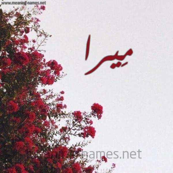 صورة اسم مِيرا Mira شكل 18 صوره الورد الأحمر للإسم بخط رقعة