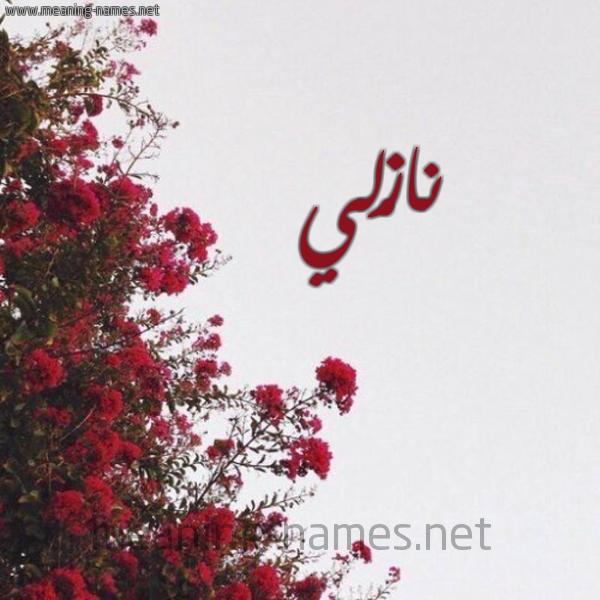 صورة اسم نازْلي Nazli شكل 18 صوره الورد الأحمر للإسم بخط رقعة