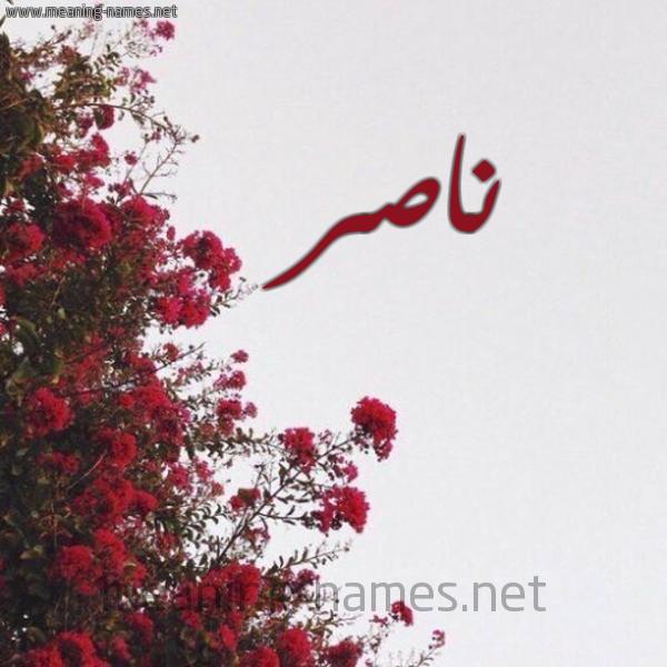 ناصر شكل 18 صوره الورد الأحمر للإسم بخط رقعة كتابة على الورد 2021