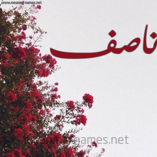 صورة اسم ناصف Nasf شكل 18 صوره الورد الأحمر للإسم بخط رقعة