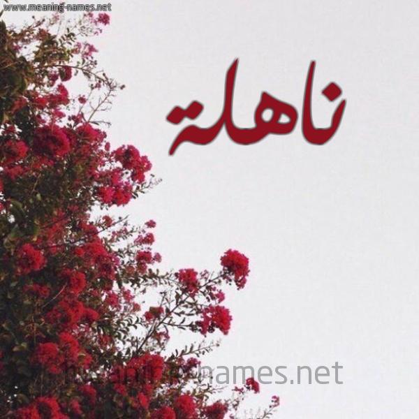 صورة اسم ناهلة NAHLH شكل 18 صوره الورد الأحمر للإسم بخط رقعة