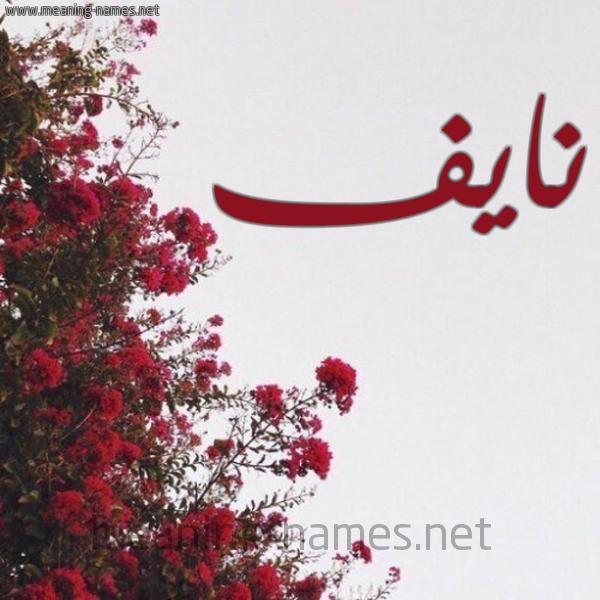 شكل 18 صوره الورد الأحمر للإسم بخط رقعة صورة اسم نايف Nayf