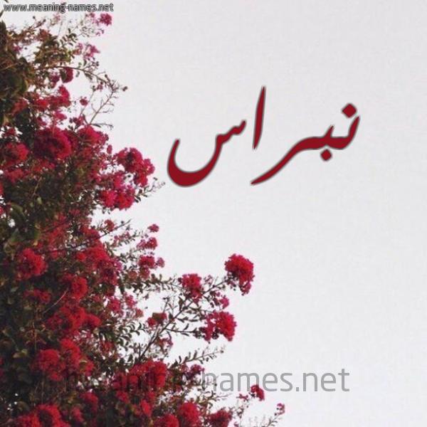 صورة اسم نبراس Nbras شكل 18 صوره الورد الأحمر للإسم بخط رقعة