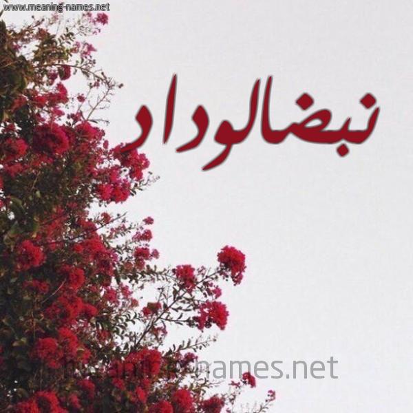شكل 18 صوره الورد الأحمر للإسم بخط رقعة صورة اسم نبضالوداد Nbdalwdad