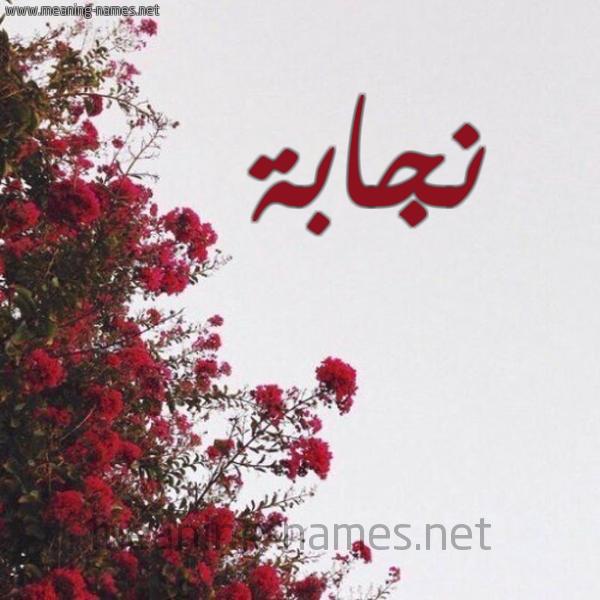 شكل 18 صوره الورد الأحمر للإسم بخط رقعة صورة اسم نجابة Njabh