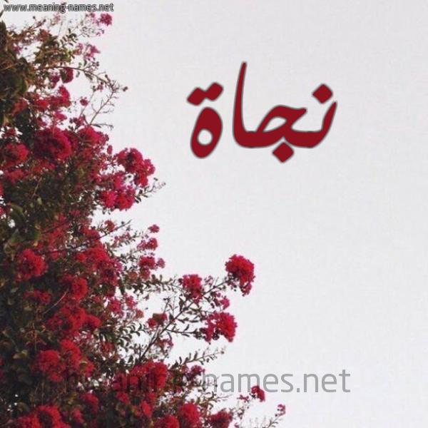 صور عن اسم نجاة