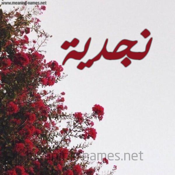 صورة اسم نجدية Njdyh شكل 18 صوره الورد الأحمر للإسم بخط رقعة