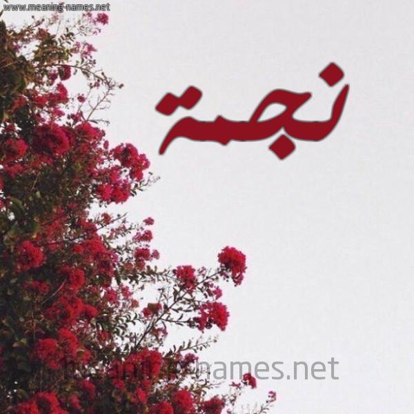 صورة اسم نجمة Njma شكل 18 صوره الورد الأحمر للإسم بخط رقعة
