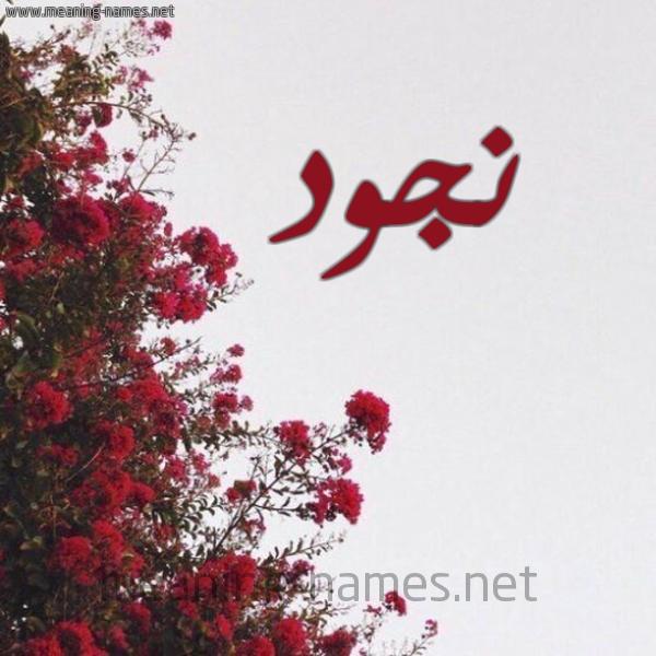 صورة اسم نجود Noujoud شكل 18 صوره الورد الأحمر للإسم بخط رقعة