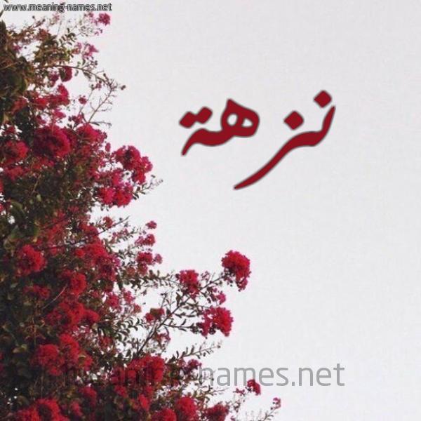 صورة اسم نزهة Nzha شكل 18 صوره الورد الأحمر للإسم بخط رقعة