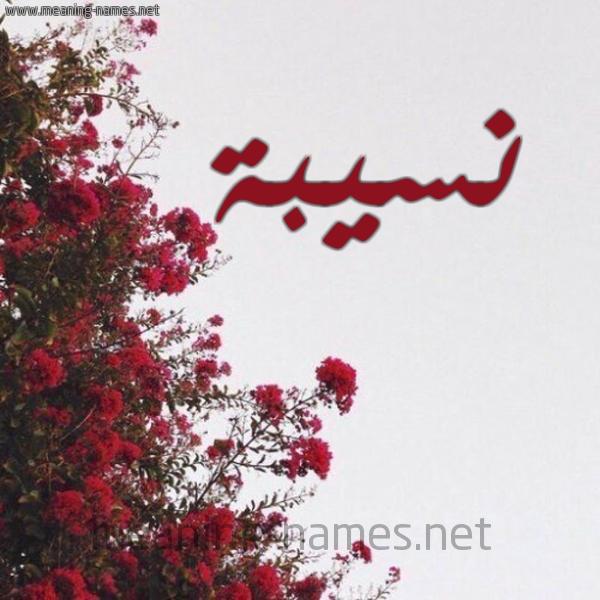 صورة اسم نسيبة Nosyba شكل 18 صوره الورد الأحمر للإسم بخط رقعة