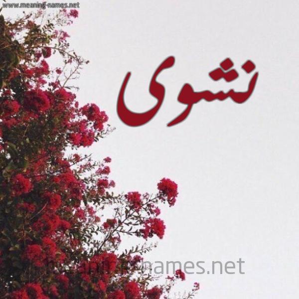 صورة اسم نشوى Nashwa شكل 18 صوره الورد الأحمر للإسم بخط رقعة