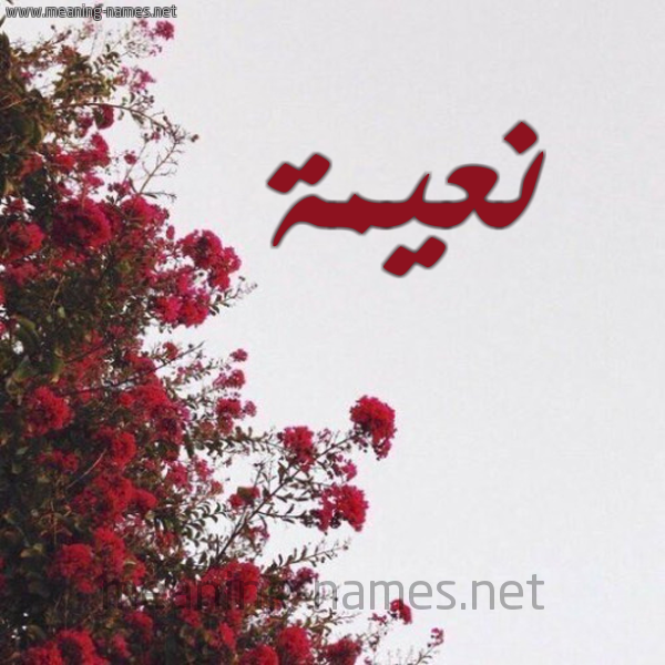 صورة اسم نعيمة Naema شكل 18 صوره الورد الأحمر للإسم بخط رقعة