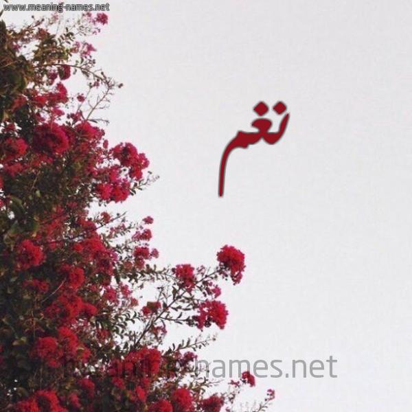 صورة اسم نغم Nagham شكل 18 صوره الورد الأحمر للإسم بخط رقعة
