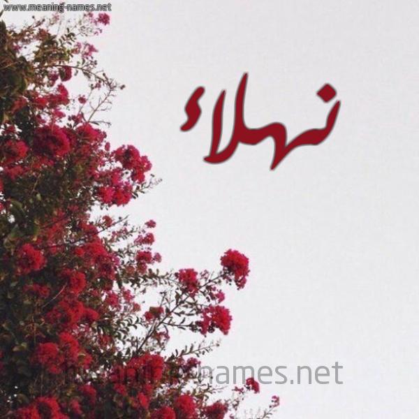 شكل 18 صوره الورد الأحمر للإسم بخط رقعة صورة اسم نهلاء Nhla'a