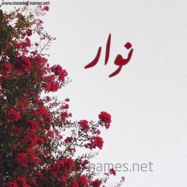 صورة اسم نوار Nwar شكل 18 صوره الورد الأحمر للإسم بخط رقعة