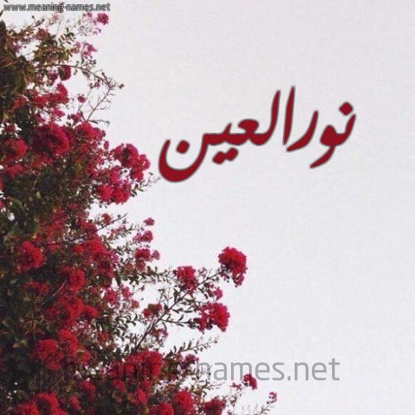 صورة اسم نورالعين Nwral'yn شكل 18 صوره الورد الأحمر للإسم بخط رقعة