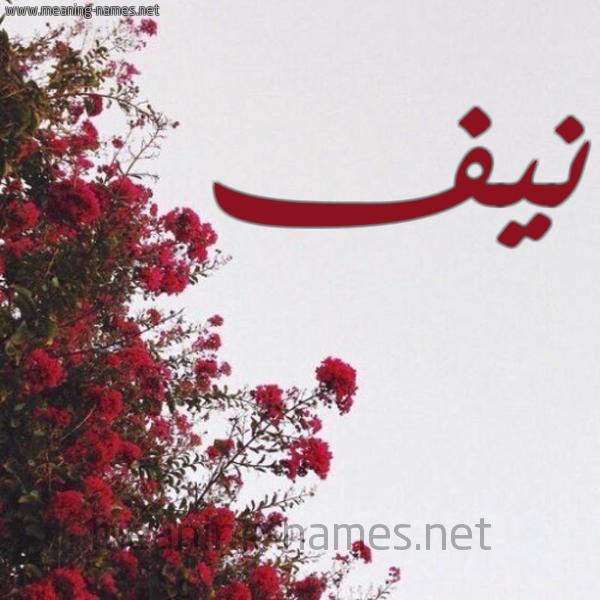 صورة اسم نيف Nyf شكل 18 صوره الورد الأحمر للإسم بخط رقعة