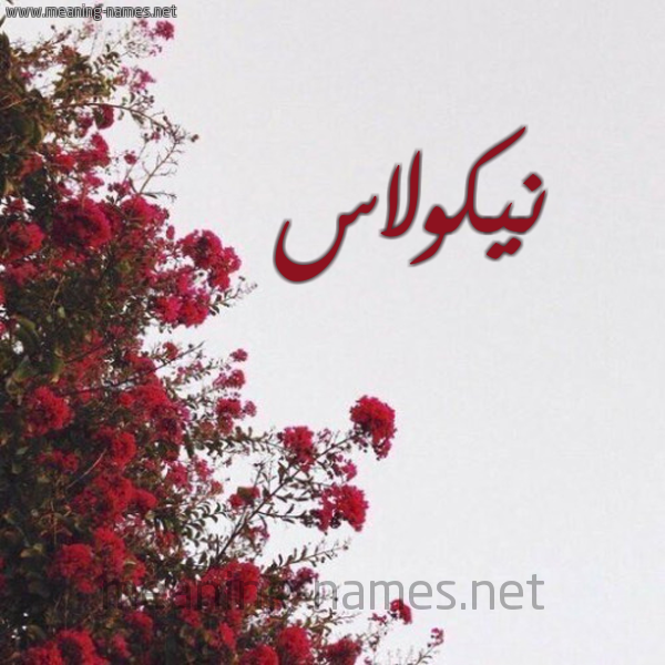 صورة اسم نيكولاس NIKOLAS شكل 18 صوره الورد الأحمر للإسم بخط رقعة