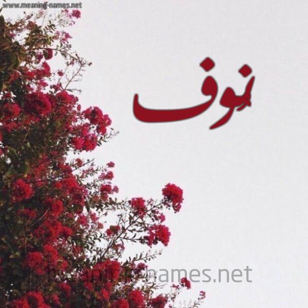 صورة اسم نُوف Noof شكل 18 صوره الورد الأحمر للإسم بخط رقعة
