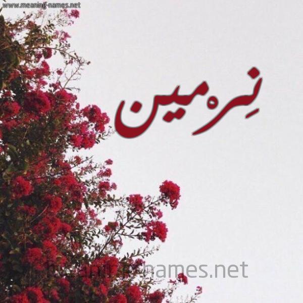 صورة اسم نِرْمين Nermen شكل 18 صوره الورد الأحمر للإسم بخط رقعة