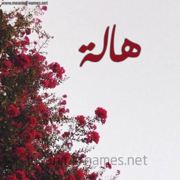 صور اسم هاله   قاموس الأسماء و المعاني