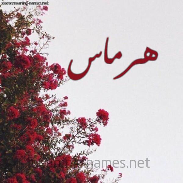 صورة اسم هرماس Hrmas شكل 18 صوره الورد الأحمر للإسم بخط رقعة
