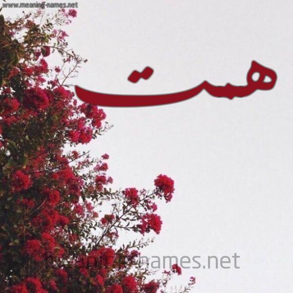 صورة اسم همت HMT شكل 18 صوره الورد الأحمر للإسم بخط رقعة