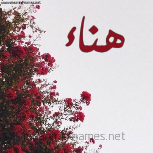صورة اسم هناء Hana شكل 18 صوره الورد الأحمر للإسم بخط رقعة
