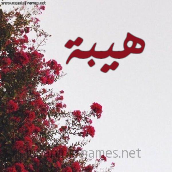 صورة اسم هيبة Hybh شكل 18 صوره الورد الأحمر للإسم بخط رقعة