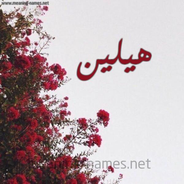 صورة اسم هيلين Hilin شكل 18 صوره الورد الأحمر للإسم بخط رقعة