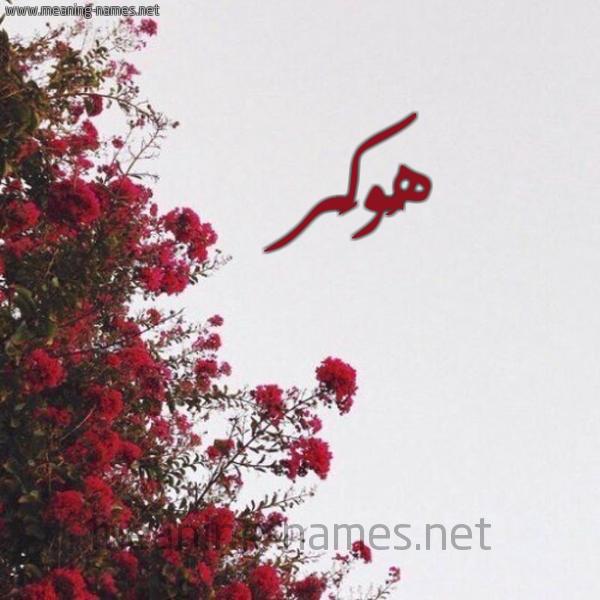 صورة اسم هُوكَر HOOKAR شكل 18 صوره الورد الأحمر للإسم بخط رقعة