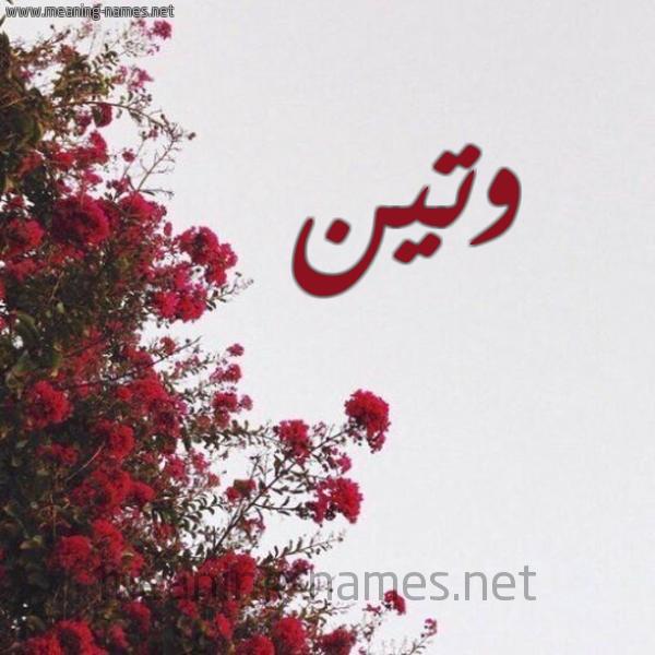 صورة اسم وتين WaTeEn شكل 18 صوره الورد الأحمر للإسم بخط رقعة